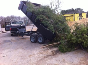 treework